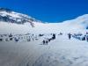 juneau-dog-sled-tour_06_eng
