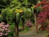 Ботанический сад/ Glacier Gardens